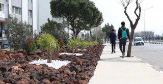 Kaya Bahçeleri Suya Tasarruf Şehre Estetik Getirdi