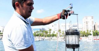 Mersin Büyükşehir, Akdeniz'i Denetimlerle Koruyor