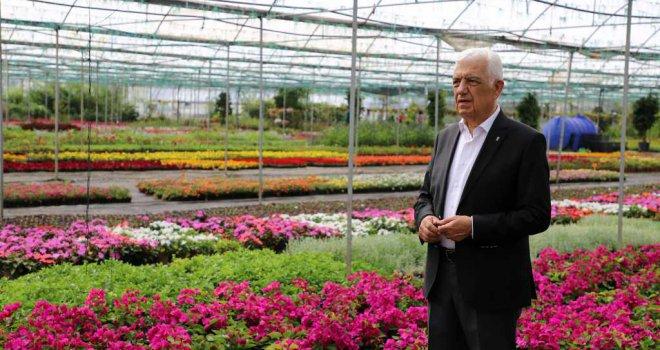 Muğlalı Kadınlar 3 serayı 27 seraya çıkardılar 18 milyon çiçek ürettiler