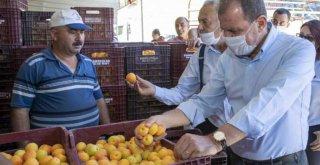 Büyükşehir'den Mut'taki Çiftçilere 16 Kilometre Sulama Borusu