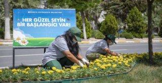 Mersin, Büyükşehir'le Çiçek Açıyor